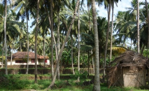 Seawind Residence in Madathil at Kappil Beach, Kerala