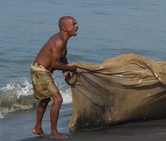 Fishmerman near Varkala