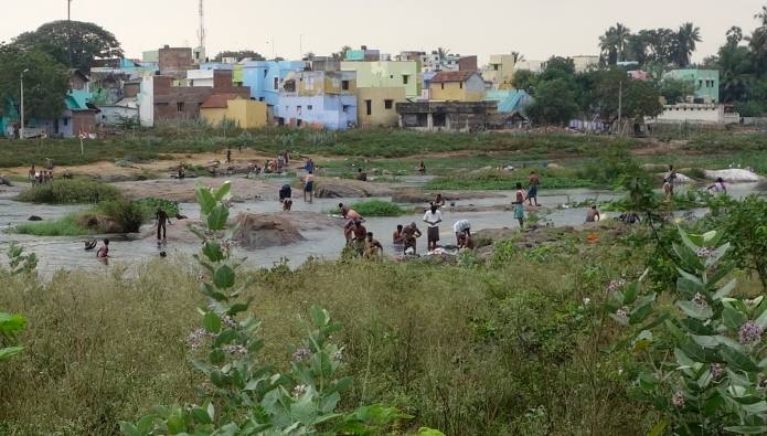 Thousands in Tiruneveli use the polluted Thamirabarmai River as their toilet and washroom